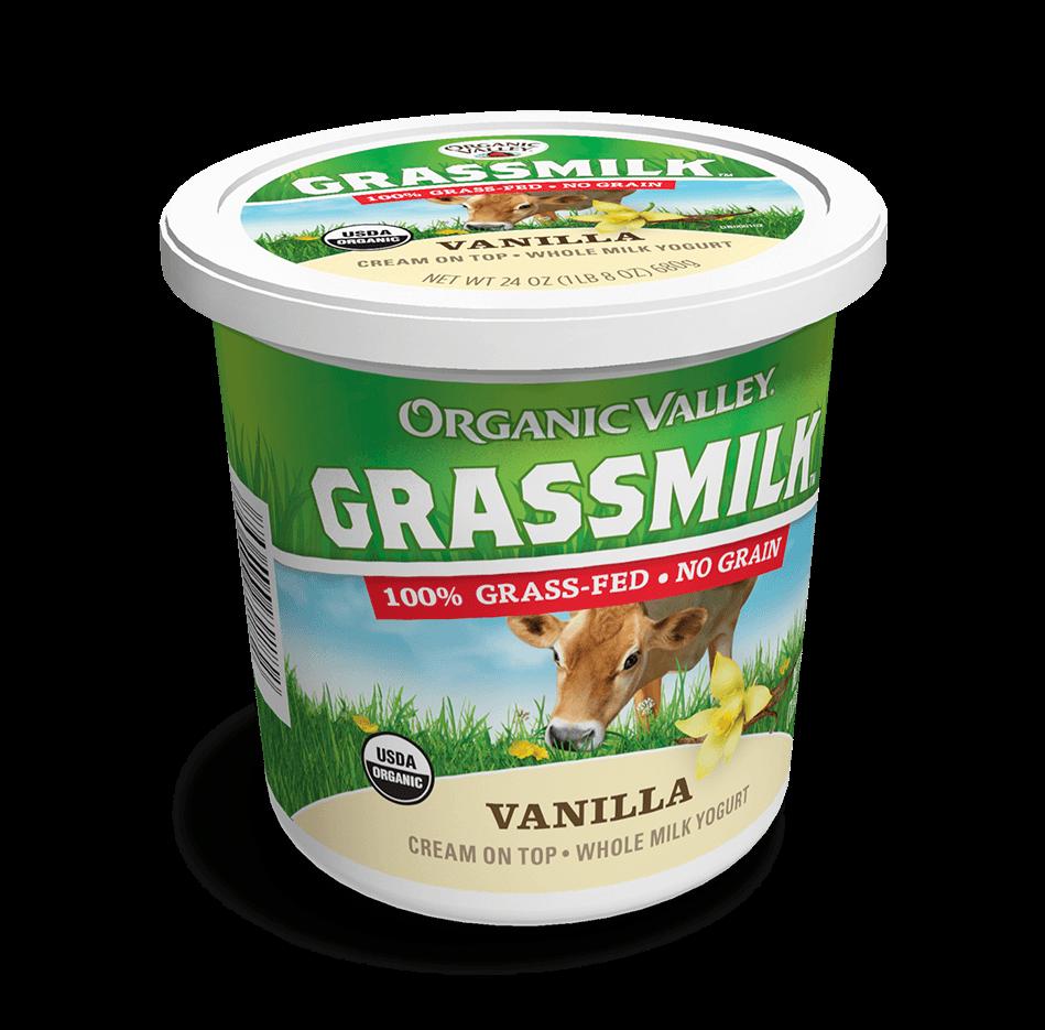 24-Hour-Full-Cream Cow Milk Yogurt