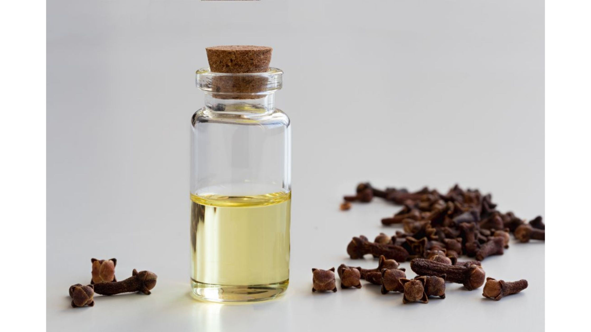 Cloves or clove oil