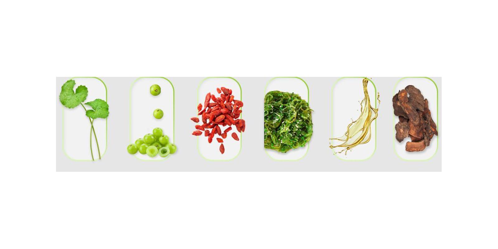 MitoBoost Supplement Ingredients