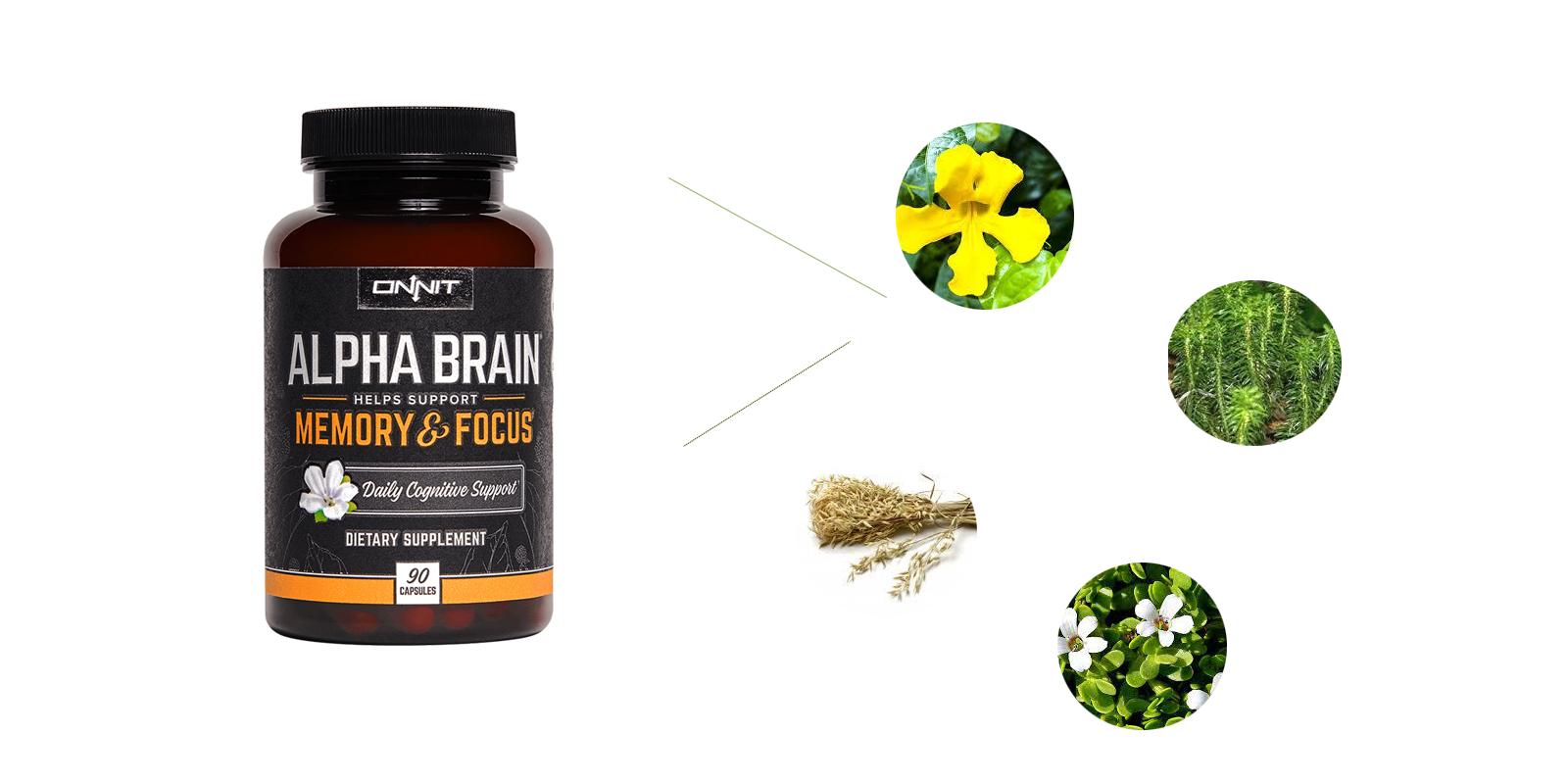 Onnit Alpha Brain Reviews-ingredients