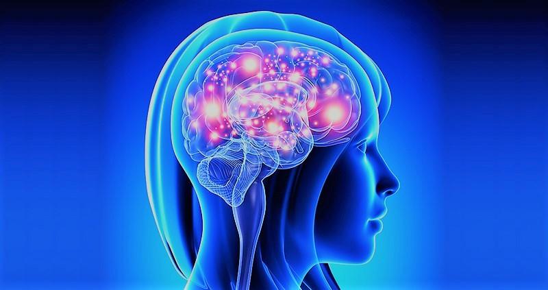 The Parkinson's Protocol guide