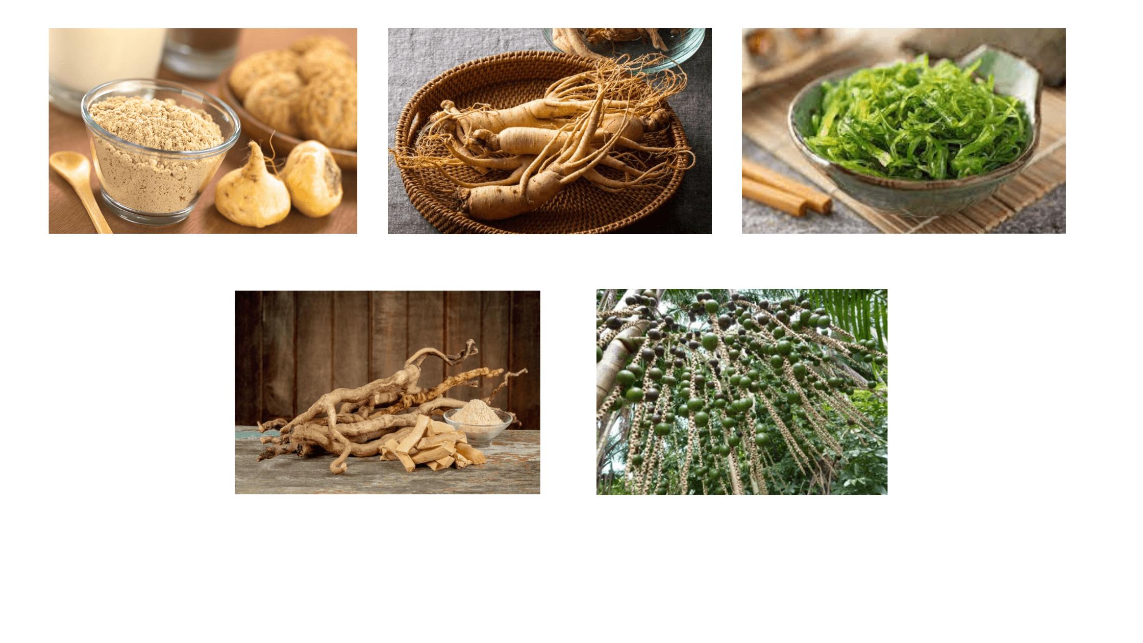 Flexotone Dietary Supplement Ingredients