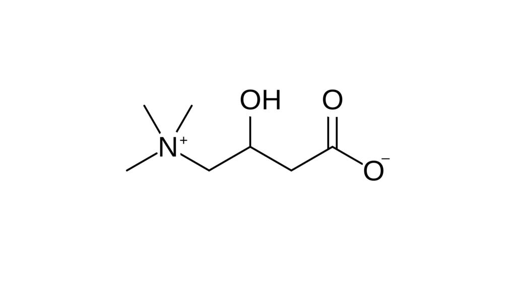VivaSlim Ingredients -L-Carnitine