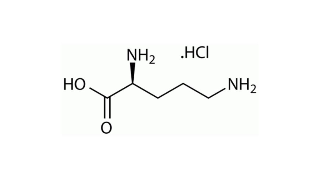 VivaSlim Ingredients -L-Ornithine