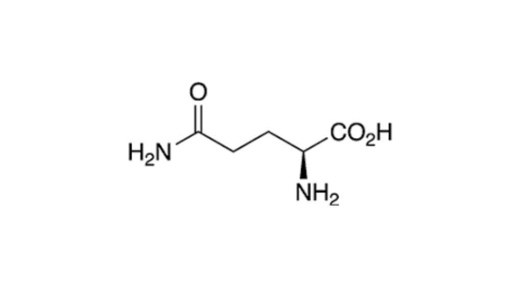 VivaSlim Ingredients -L-arginine